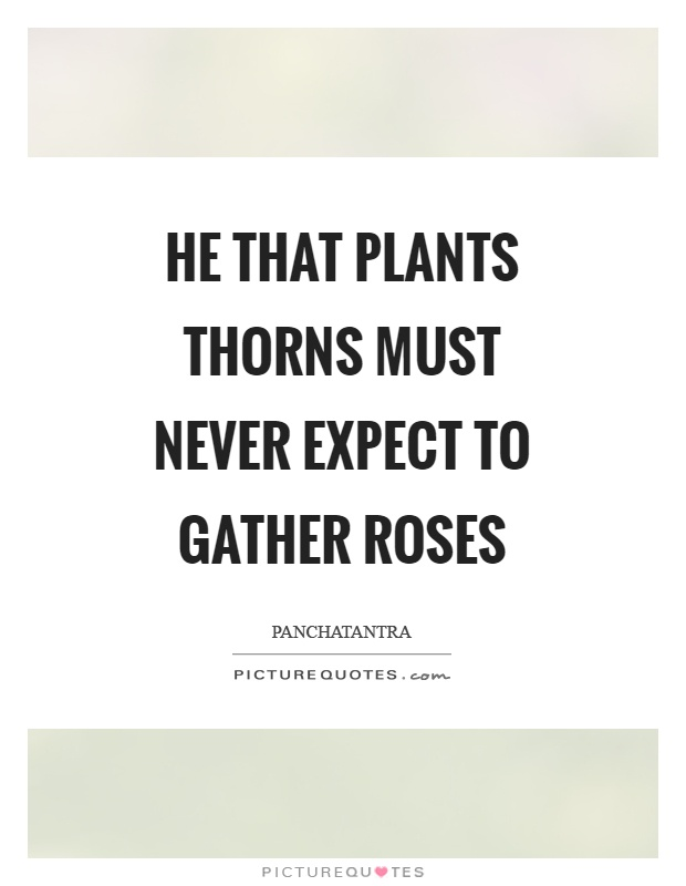 He that plants thorns must never expect to gather roses Picture Quote #1