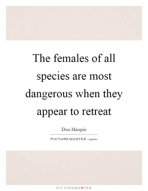 The females of all species are most dangerous when they appear to retreat Picture Quote #1