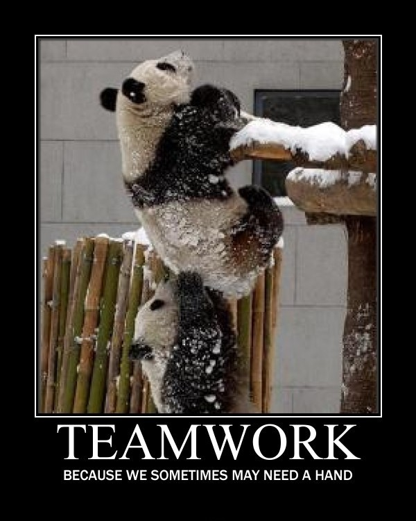 Humorous Teamwork Quote 3 Picture Quote #1