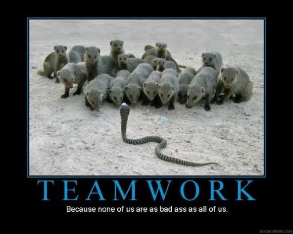 Teamwork Quote 20 Picture Quote #1