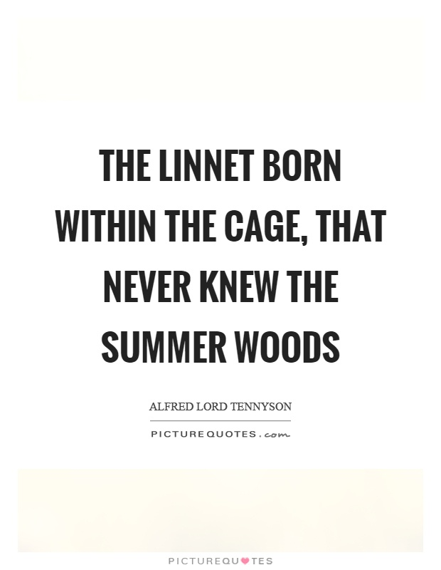 The linnet born within the cage, that never knew the summer woods Picture Quote #1