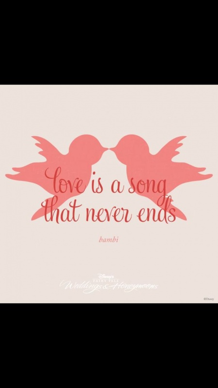 Disney Wedding Quote 1 Picture Quote #1