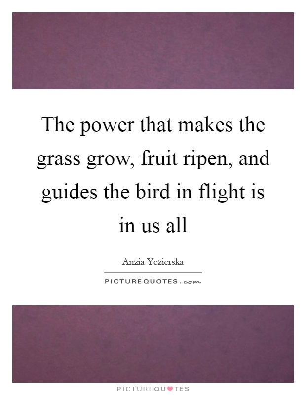 The power that makes the grass grow, fruit ripen, and guides the bird in flight is in us all Picture Quote #1