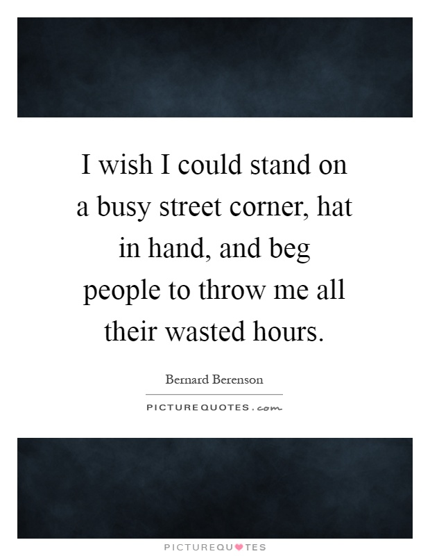 I wish I could stand on a busy street corner, hat in hand, and beg people to throw me all their wasted hours Picture Quote #1