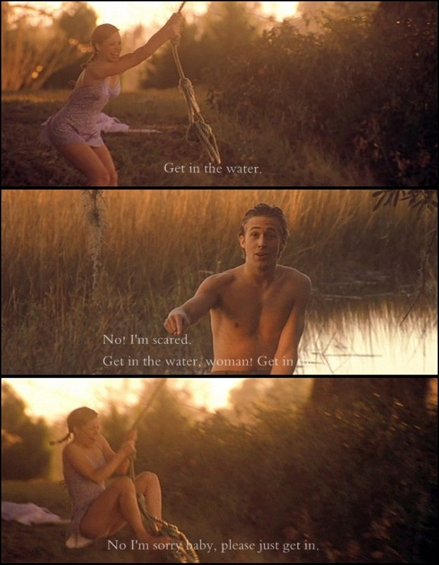 The Notebook Movie Quotes & Sayings | The Notebook Movie Picture Quotes