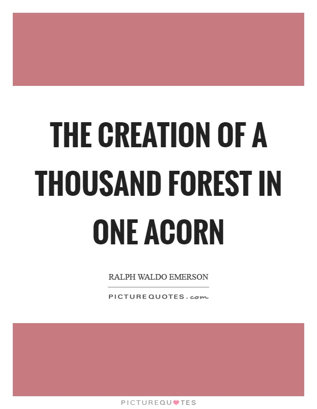 The creation of a thousand forest in one acorn Picture Quote #1