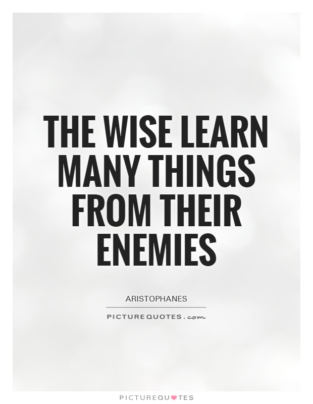 The wise learn many things from their enemies Picture Quote #1