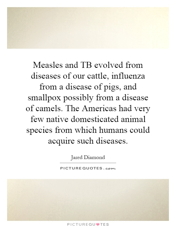 Measles and TB evolved from diseases of our cattle, influenza from a disease of pigs, and smallpox possibly from a disease of camels. The Americas had very few native domesticated animal species from which humans could acquire such diseases Picture Quote #1