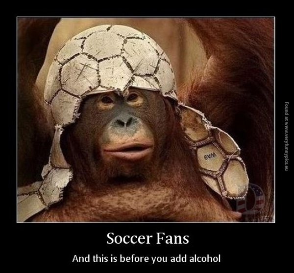 Fans Soccer Quote 1 Picture Quote #1
