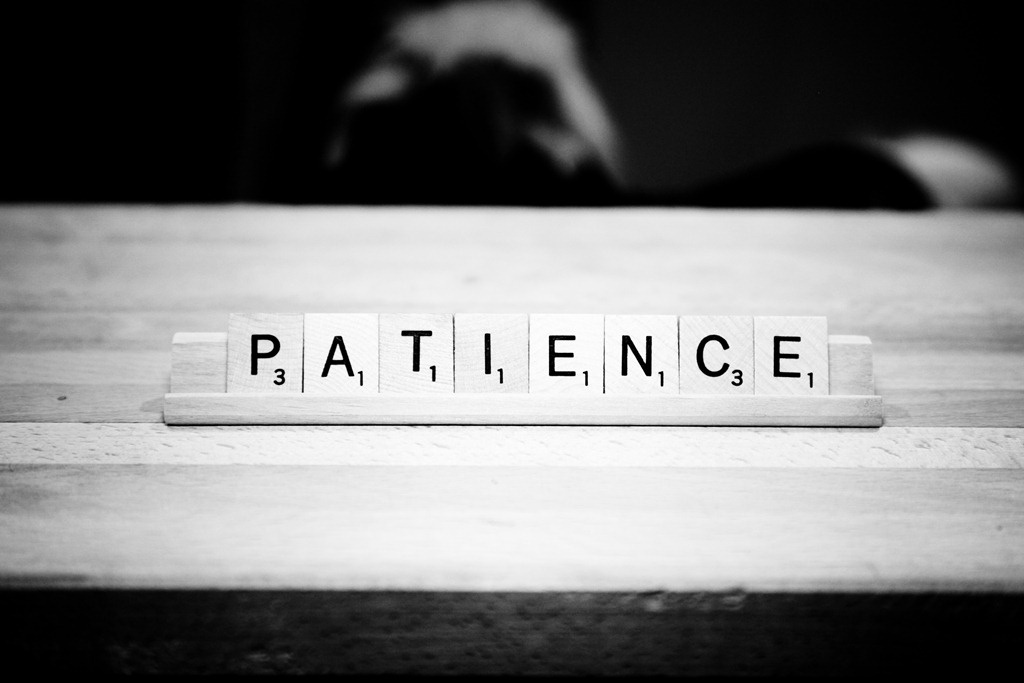 Patience Quote 10 Picture Quote #1