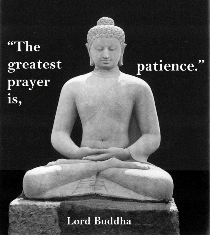 Patience Quote 12 Picture Quote #1