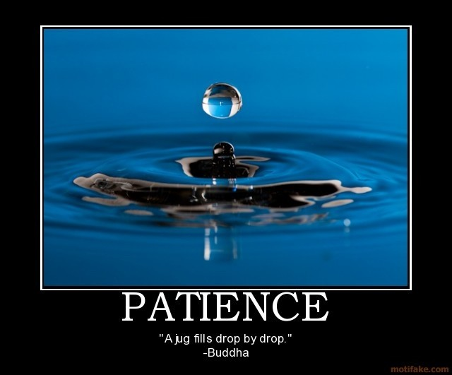Patience Quote 15 Picture Quote #1