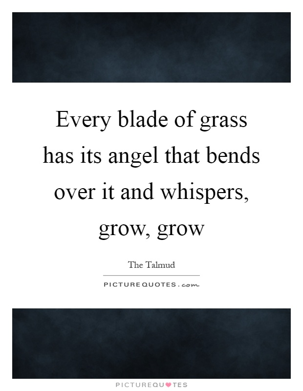 Every blade of grass has its angel that bends over it and whispers, grow, grow Picture Quote #1