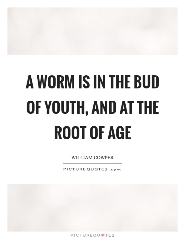 A worm is in the bud of youth, and at the root of age Picture Quote #1