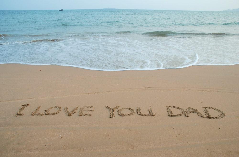 I Love You Dad Quote 1 Picture Quote #1