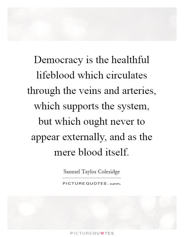 Democracy is the healthful lifeblood which circulates through the veins and arteries, which supports the system, but which ought never to appear externally, and as the mere blood itself Picture Quote #1