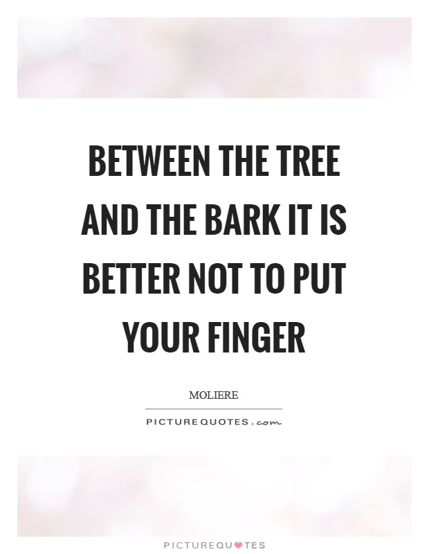 Between the tree and the bark it is better not to put your finger Picture Quote #1