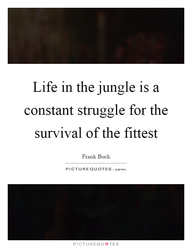 Life in the jungle is a constant struggle for the survival of the fittest Picture Quote #1
