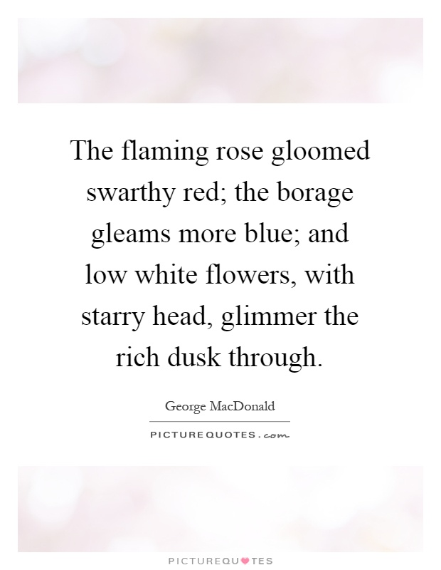 The flaming rose gloomed swarthy red; the borage gleams more blue; and low white flowers, with starry head, glimmer the rich dusk through Picture Quote #1