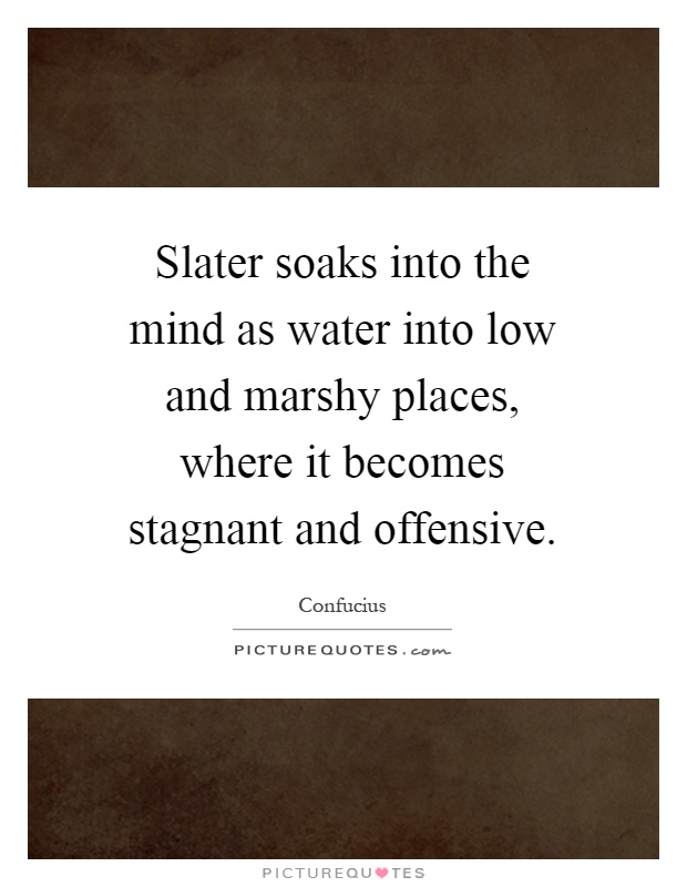Slater soaks into the mind as water into low and marshy places, where it becomes stagnant and offensive Picture Quote #1