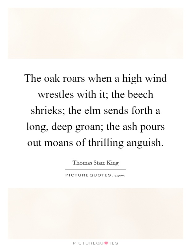 The oak roars when a high wind wrestles with it; the beech shrieks; the elm sends forth a long, deep groan; the ash pours out moans of thrilling anguish Picture Quote #1