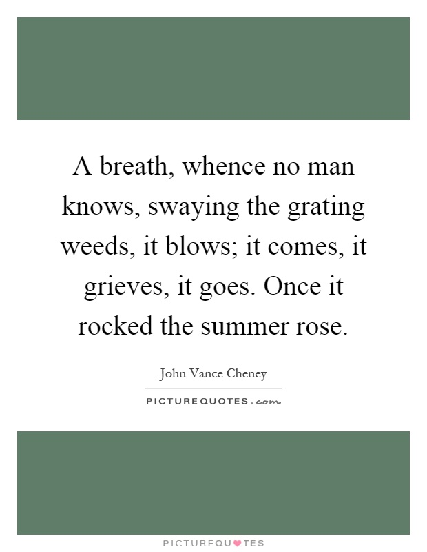 A breath, whence no man knows, swaying the grating weeds, it blows; it comes, it grieves, it goes. Once it rocked the summer rose Picture Quote #1
