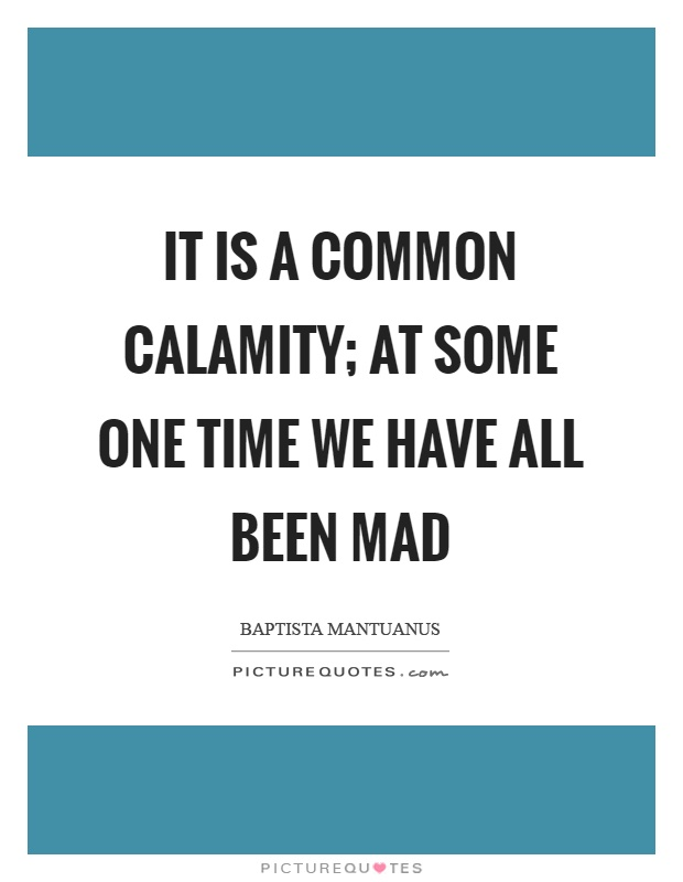 It is a common calamity; at some one time we have all been mad Picture Quote #1