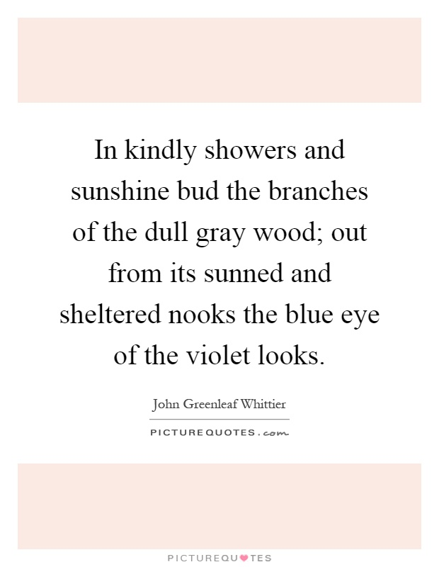 In kindly showers and sunshine bud the branches of the dull gray wood; out from its sunned and sheltered nooks the blue eye of the violet looks Picture Quote #1