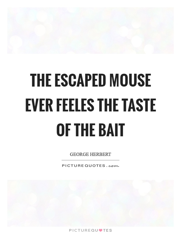The escaped mouse ever feeles the taste of the bait Picture Quote #1
