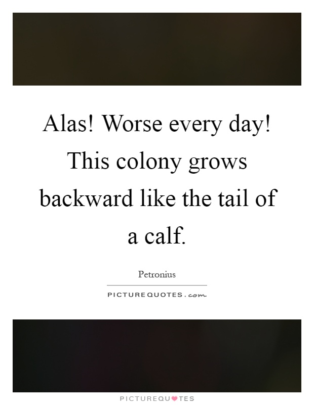 Alas! Worse every day! This colony grows backward like the tail of a calf Picture Quote #1