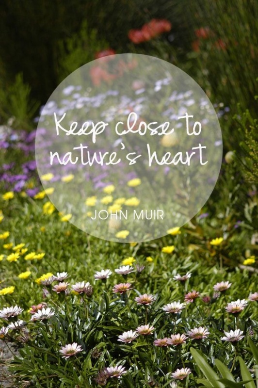 John Muir Nature Quote 1 Picture Quote #1
