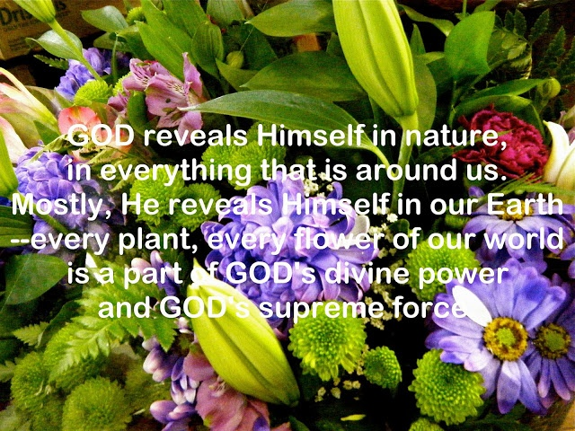 Seeing God In Nature Quote 1 Picture Quote #1