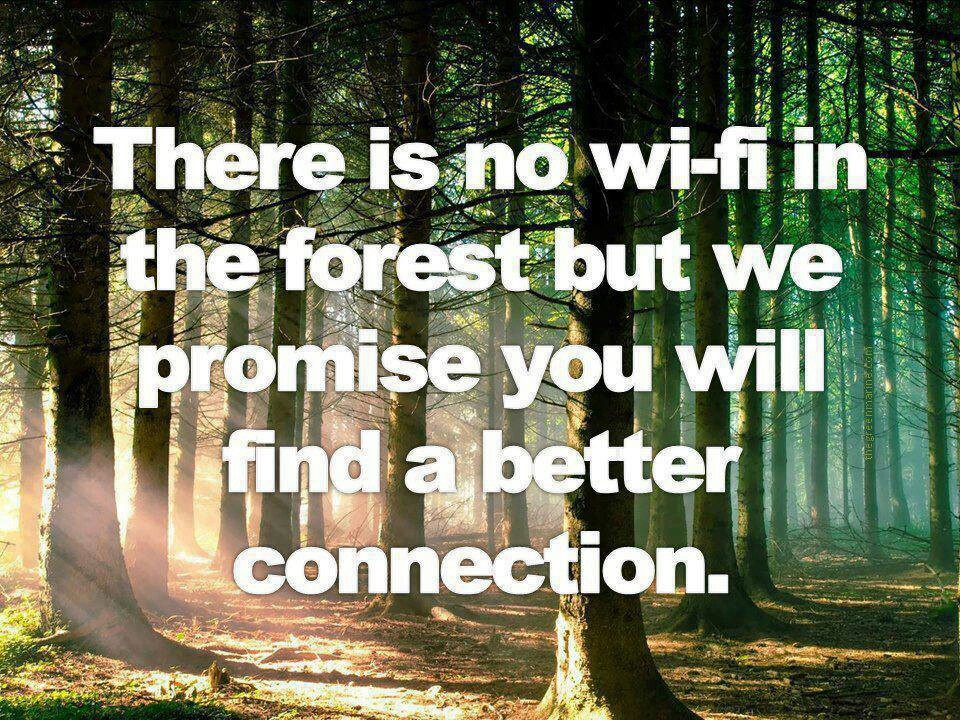 Connecting With Nature Quote 1 Picture Quote #1