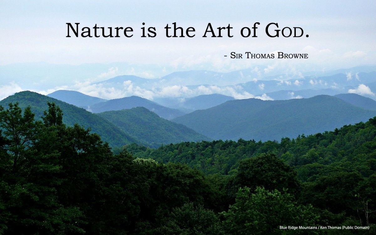 Art And Nature Quote 1 Picture Quote #1