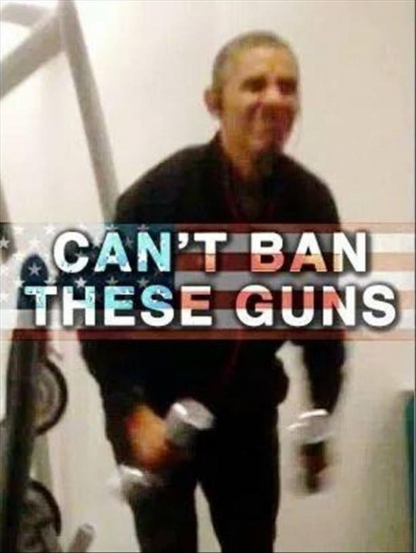 Can't ban these guns Picture Quote #1
