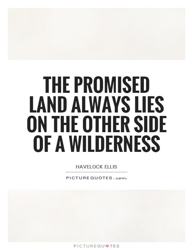 The Promised Land always lies on the other side of a Wilderness Picture Quote #1
