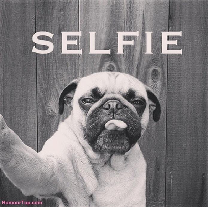 Selfie Quote 2 Picture Quote #1