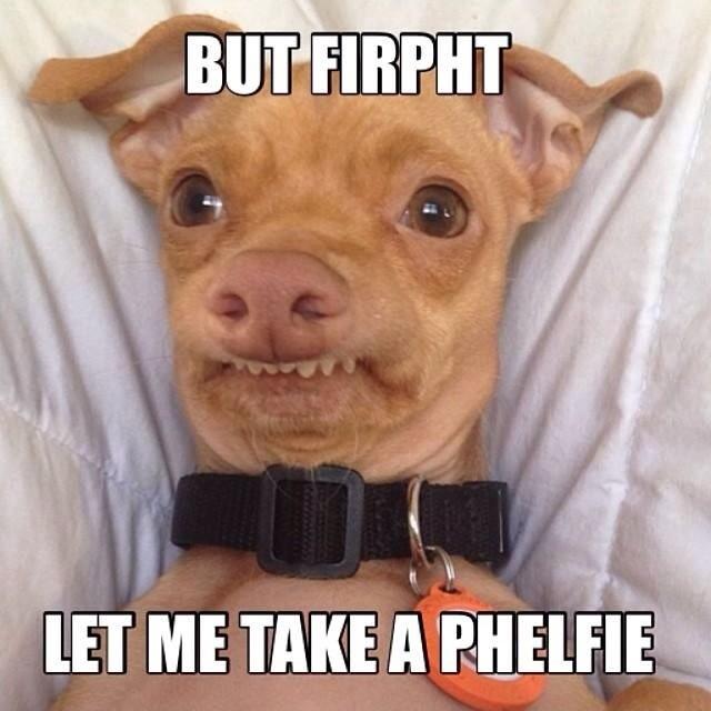 Selfie Quote 7 Picture Quote #1