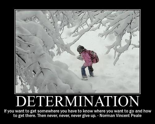 Determination Quote 8 Picture Quote #1