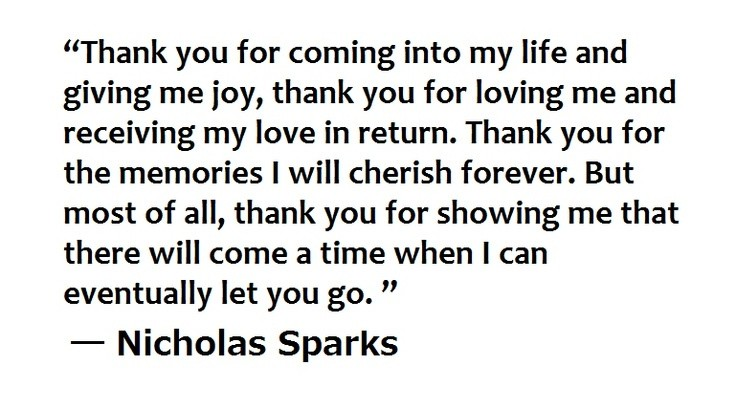 The Wedding Nicholas Sparks Quote 7 Picture Quote #1