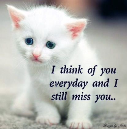 Emotional Heart Touching Quote 1 Picture Quote #1