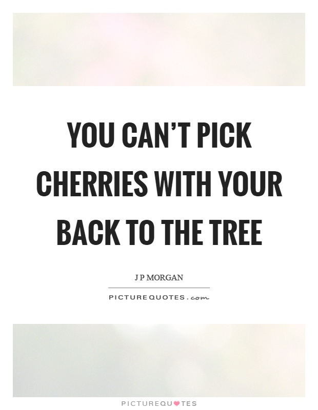 You can't pick cherries with your back to the tree Picture Quote #1