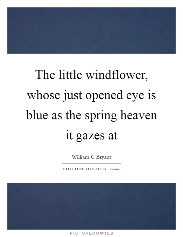 The little windflower, whose just opened eye is blue as the spring heaven it gazes at Picture Quote #1