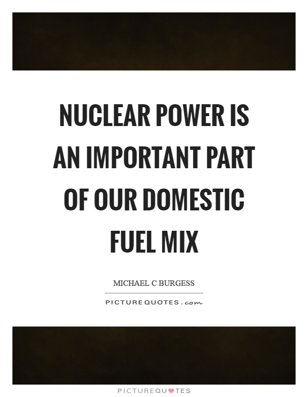 Nuclear power is an important part of our domestic fuel mix Picture Quote #1