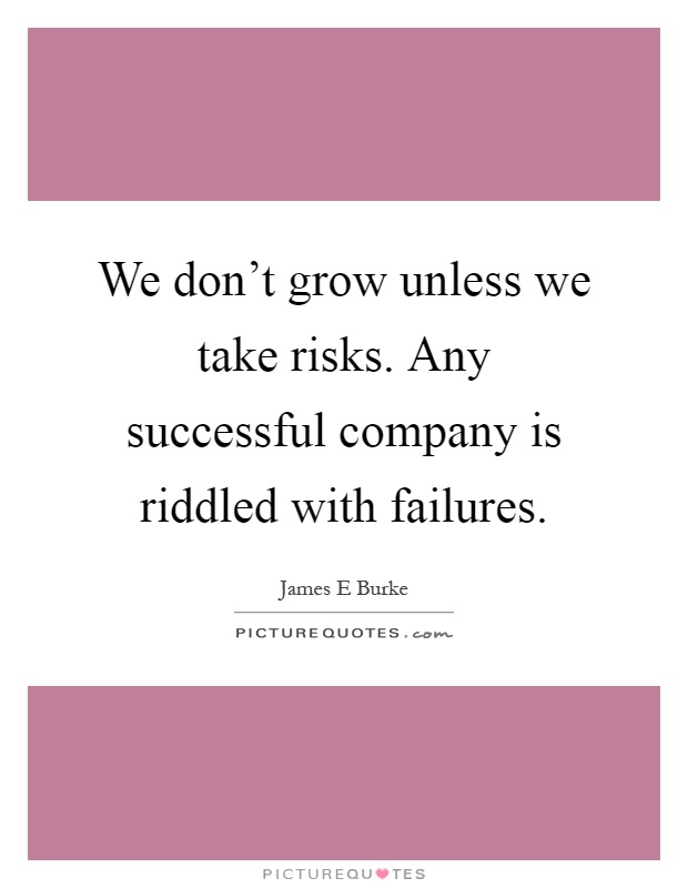 We don't grow unless we take risks. Any successful company is riddled with failures Picture Quote #1