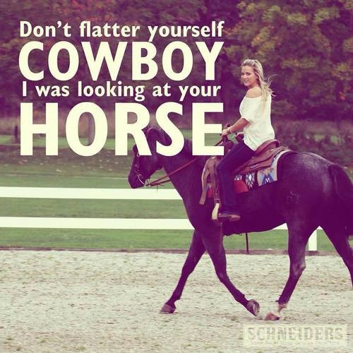 Cute Horse Quote 3 Picture Quote #1