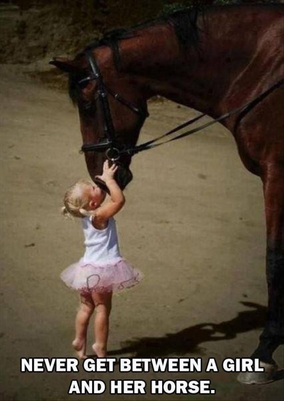 Girl And Her Horse Quote 1 Picture Quote #1