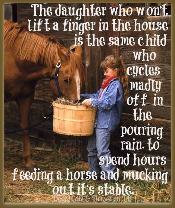 Little Girls And Horse Quote | Quote Number 581097 | Picture Quotes