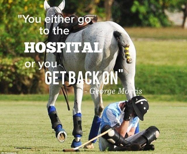 Horse Quote 15 Picture Quote #2