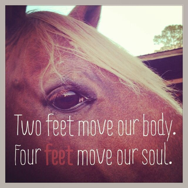 Horse Quote 30 Picture Quote #1